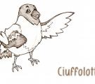 Ciuffolotto